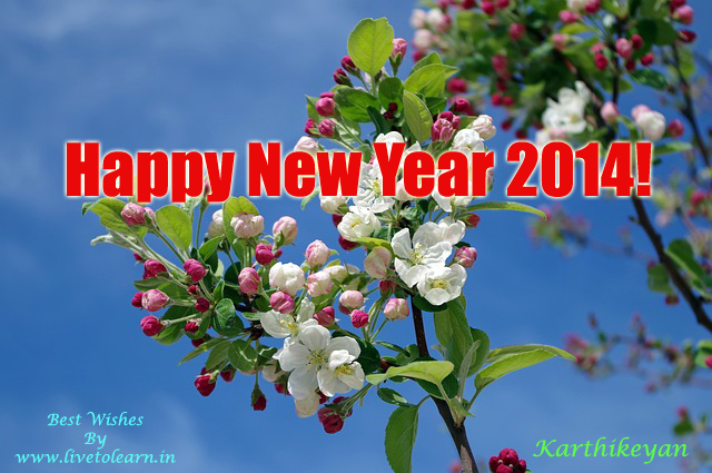 Happy New Year Wishes By LivetoLearn